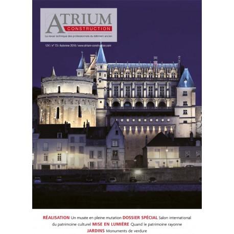 Atrium Construction 73