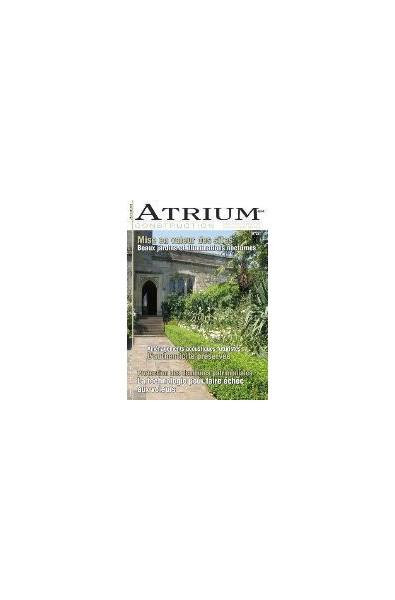 Atrium Construction N°28